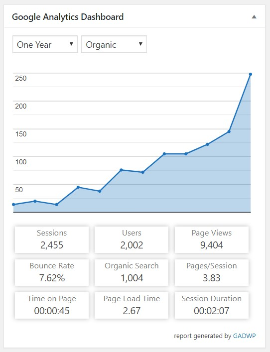 WiFiGuys organic traffic data illustrates the impact of content SEO on a small business website